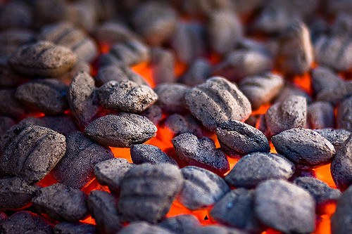 Best Charcoal - Lump Charcoal vs Briquettes