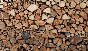 Best Wood for Smoking